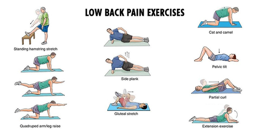 lower-back-pain-exercises